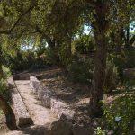 Paysagiste - Création de jardin - Ajaccio - Porticcio